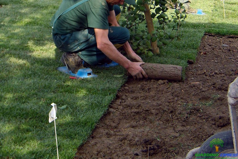 Giardino express galleria impresa di giardinaggio a torino for Prato inglese a rotoli